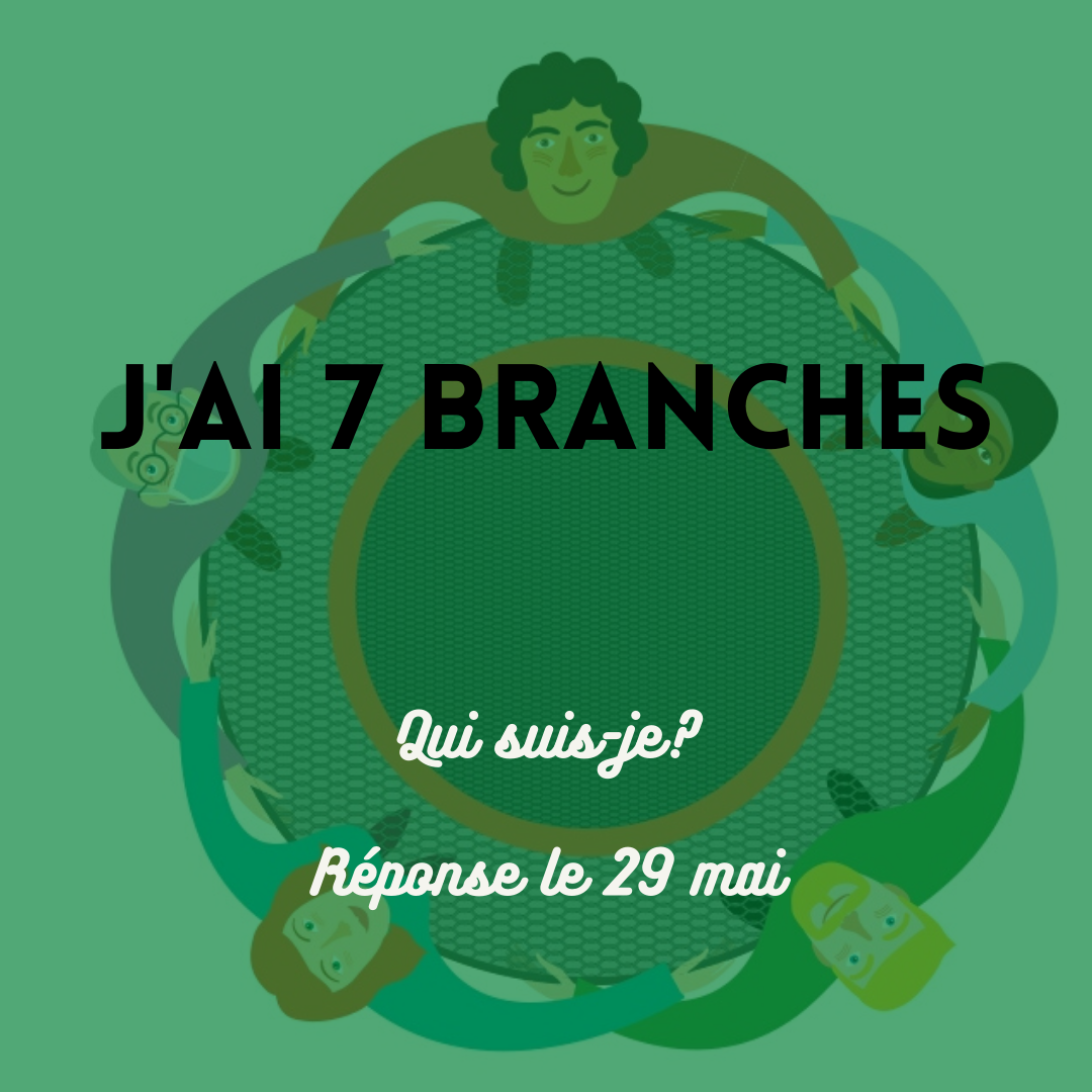 2 sept branches